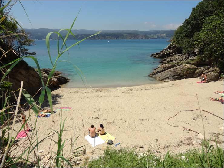 Asturias en imagenes descargas for Viveros en asturias
